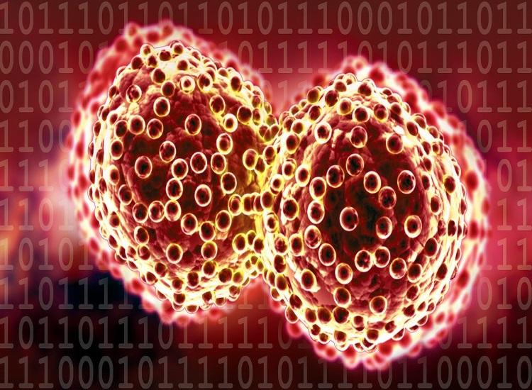 melanoma é um tumor maligno que se origina a partir dos mela